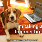 Beagle Dog Im taking an Internet break