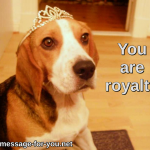 Beagle Dog You are royalty