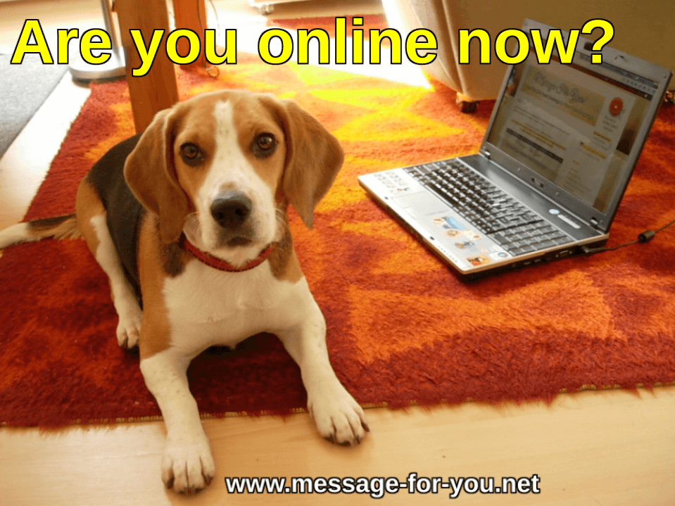 Beagle Dog says Are you online now