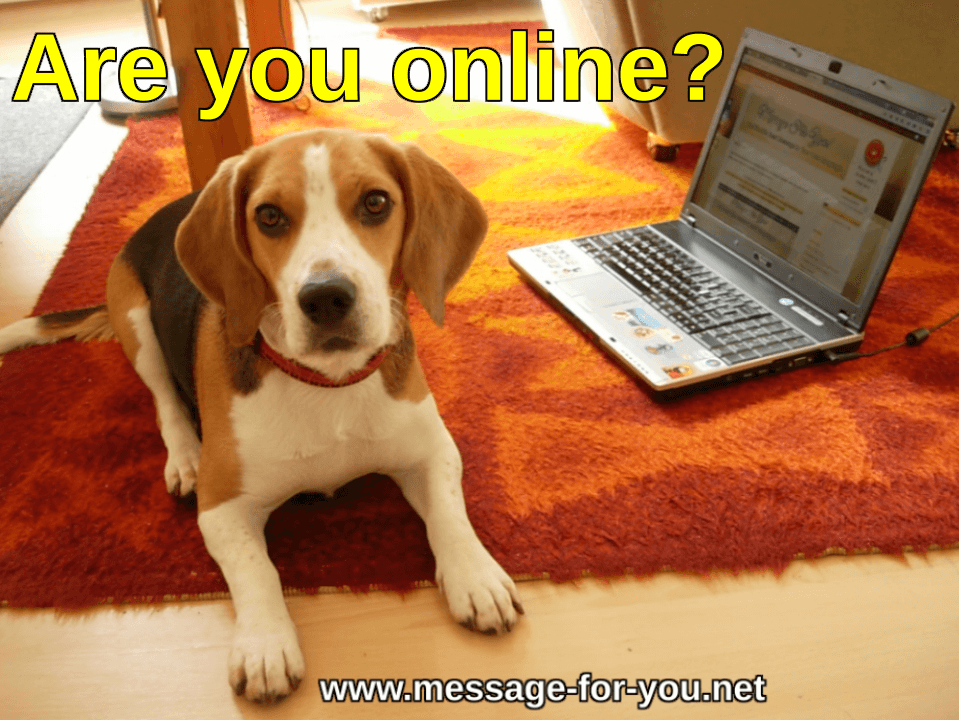 Beagle Dog says Are you online