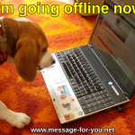 Beagle Dog says Im ging offline now