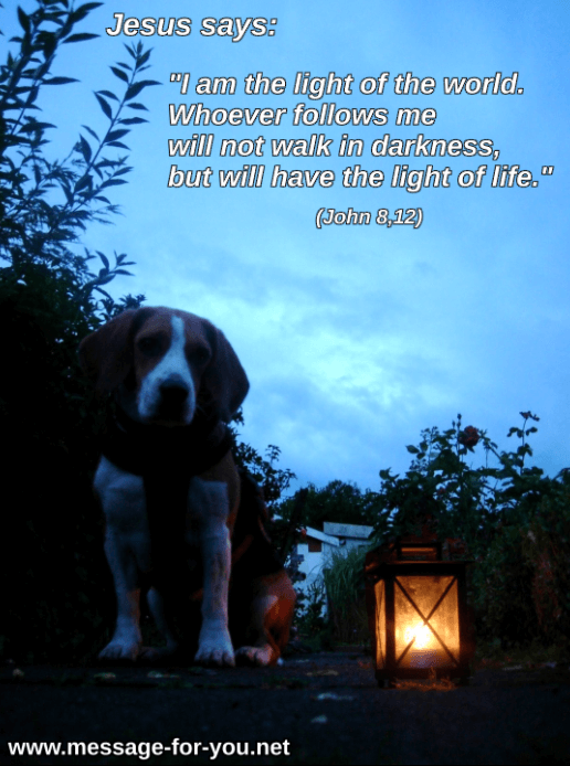 Beagle Dog with Lantern Lamp Candle