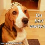 Beagle Hund Diadem Krone Du bist wertvoll