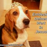 Beagle Hund Entdecke Deinen Wert in Jesus