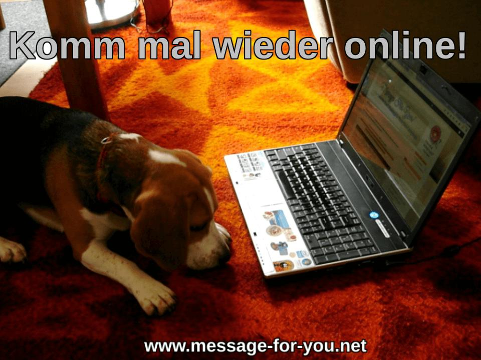Beagle Hund sagt Komm mal wieder online