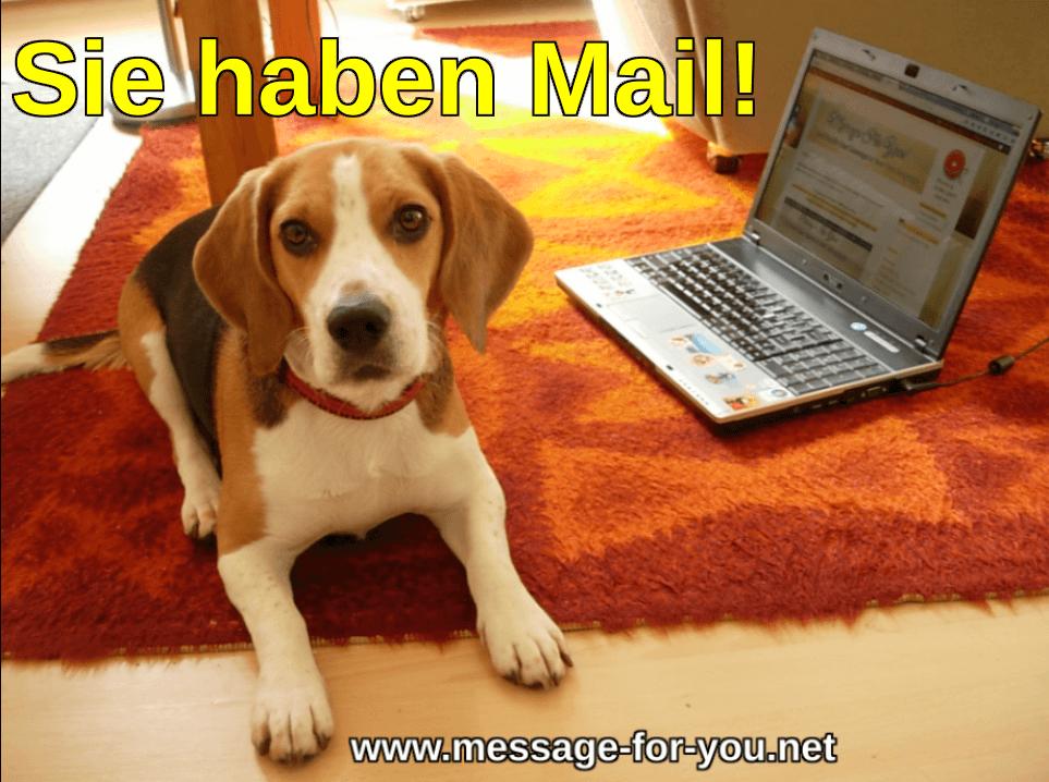 Beagle Hund sagt Sie haben Mail