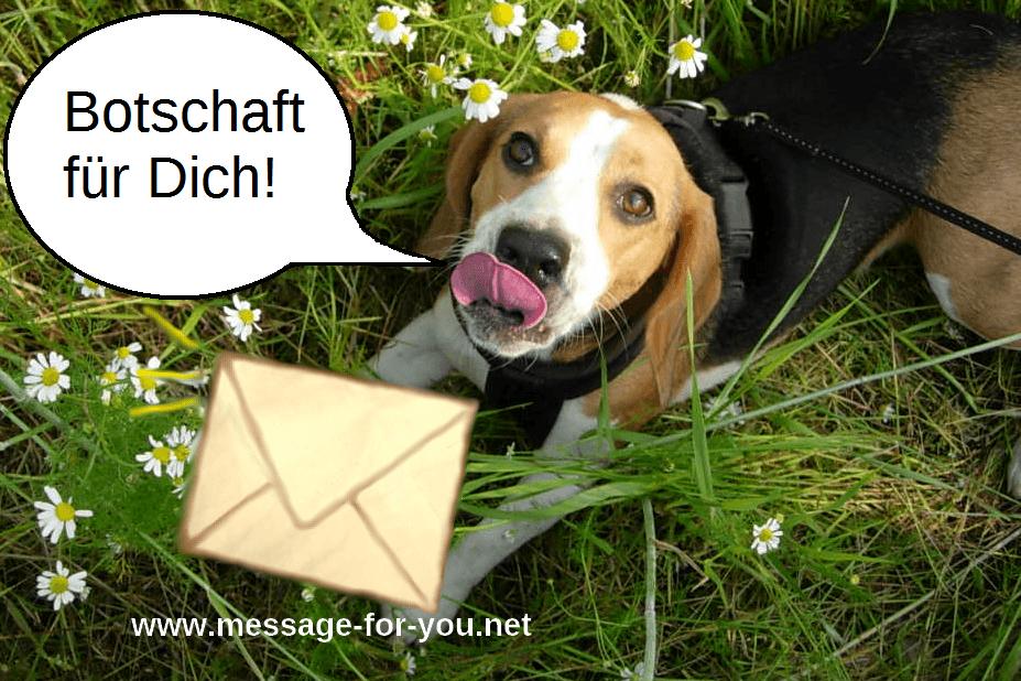 Botschaft für Dich!-Flowers-MFY-7