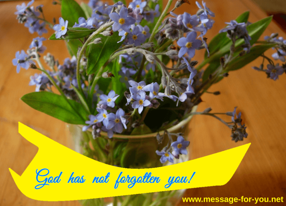 Forget-me-not God