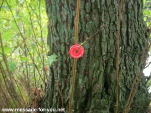 MFY-Einkaufswagenchip an Astgabel Baum